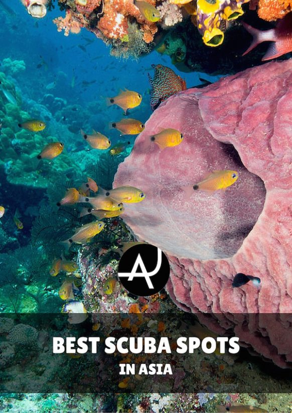 The Top 10 Best Dive Sites In Asia • The Adventure Junkies