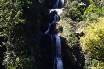 Canyoning Piha Canyon New Zealand