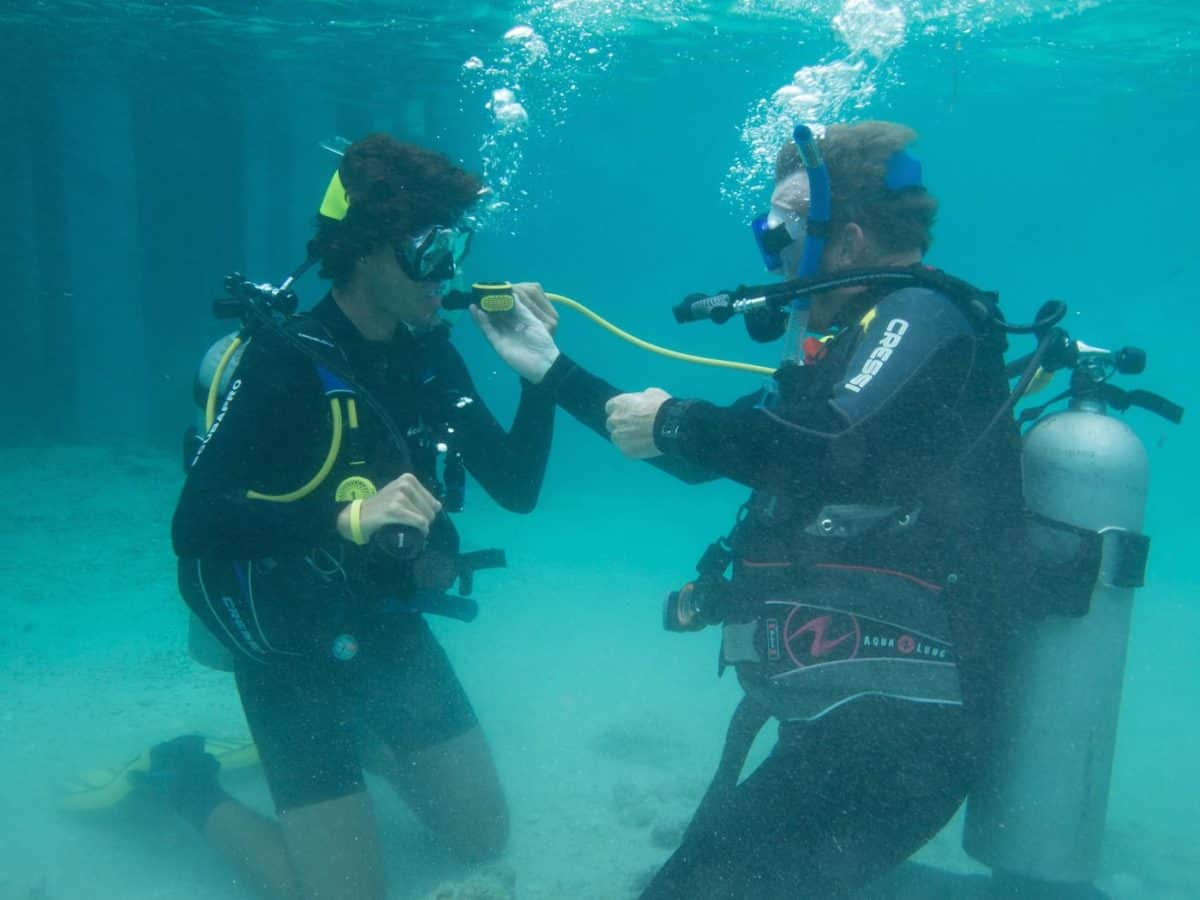 How to become a padi scuba diving instructor in roatan becoming scuba instructors in roatan fandeluxe Choice Image