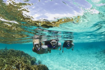 best dry snorkel