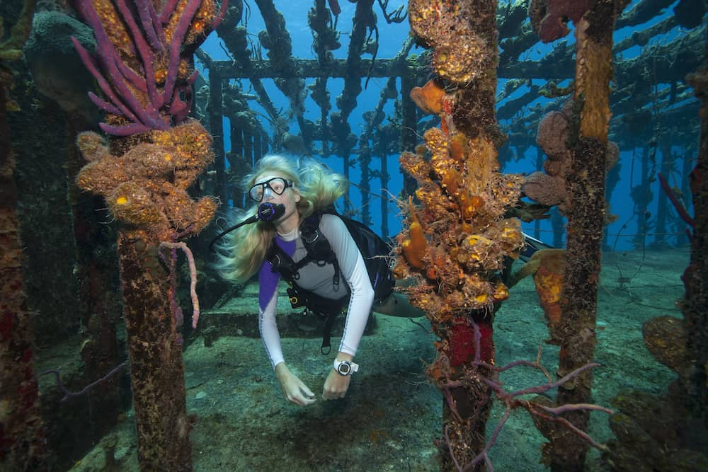 Advanced Open Water Certification Improve Your Dive Skills