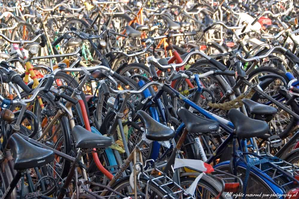 Many bicycles