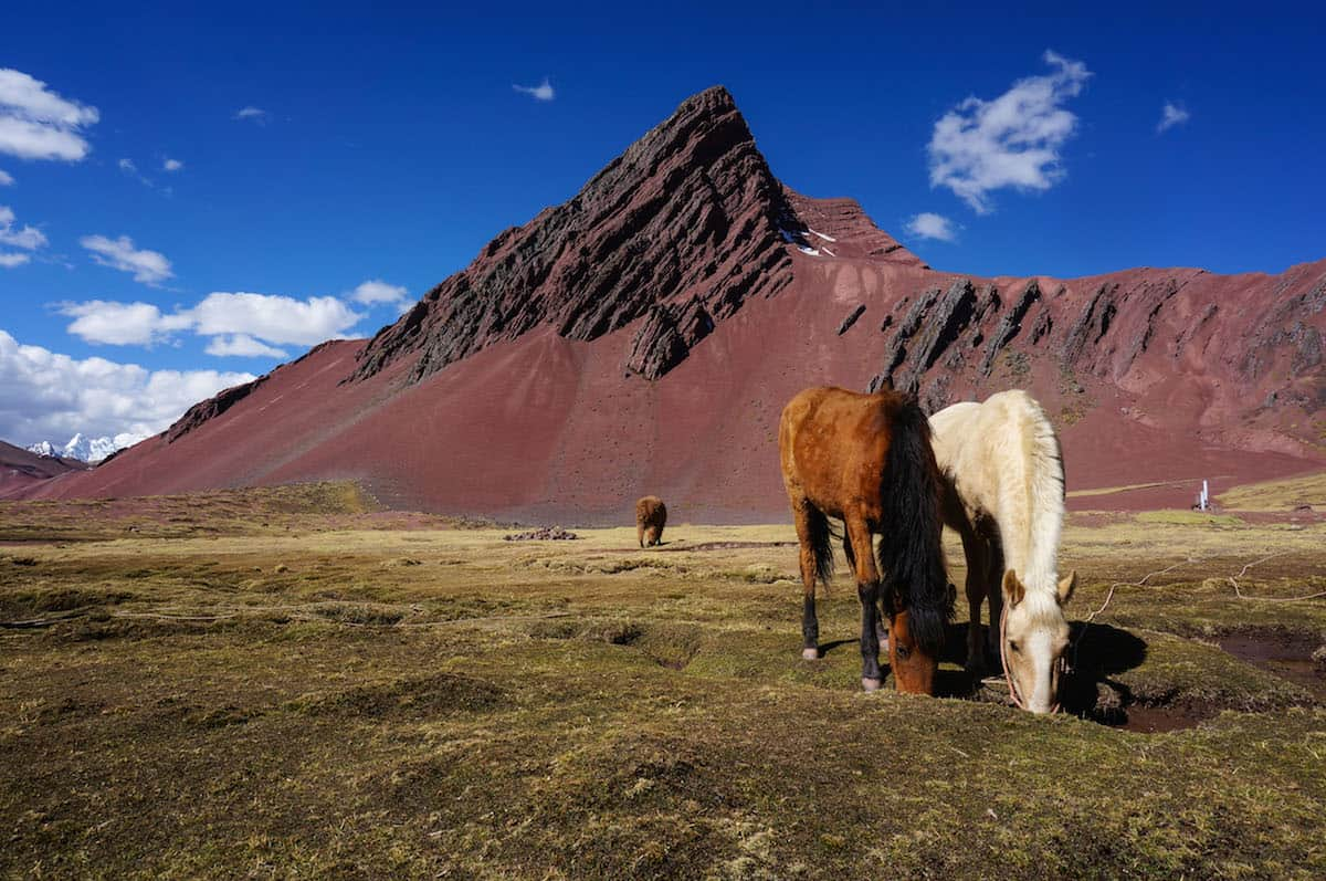 lodge horses in Ausangate