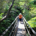 Abel Tasman Coastal Track, New Zealand