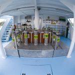 ideal bahamas liveboard to ride