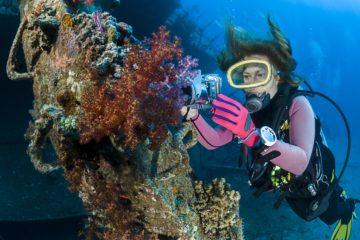 best liveaboard destinations for wreck diving
