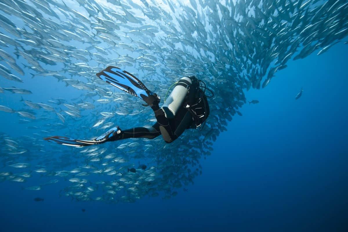 scuba diving gear deals