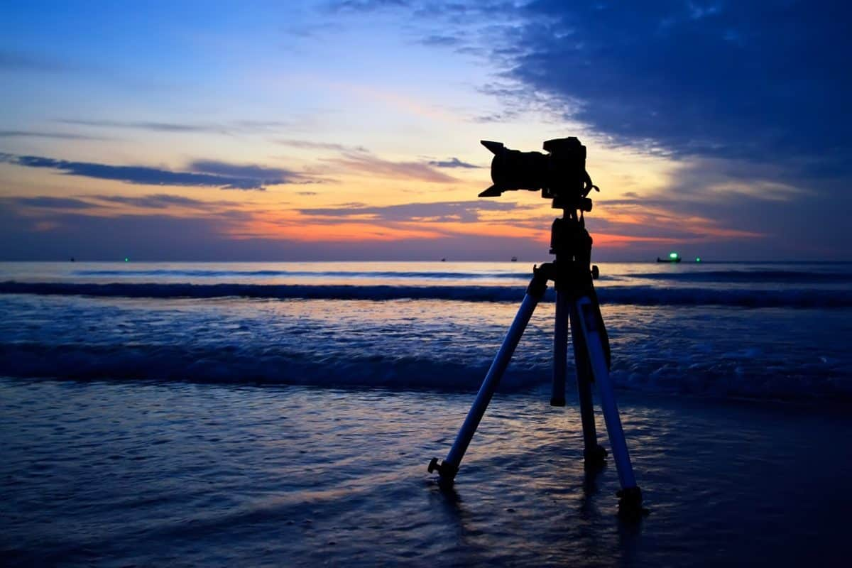 best tripod for wildlife photography