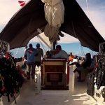 bahamas liveboard experience
