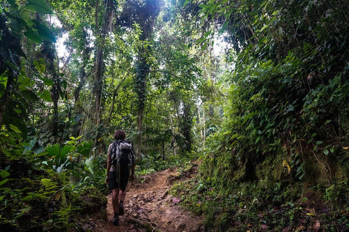 Lost City Trek - Colombia