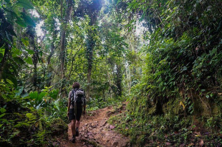 HIKING THE CIUDAD PERDIDA TREK IN COLOMBIA
