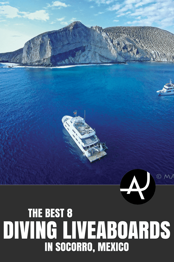 Best Diving Liveaboard Trips in Socorro, Mexico - Best Scuba Diving Destinations - Diving Bucket List - Adventure Vacations - Beautiful Locations and Places to Dive