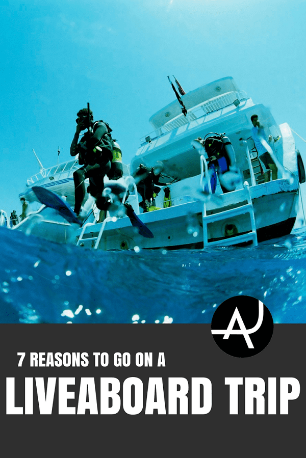 Reasons to Go on a Diving Liveaboard - Best Scuba Diving Destinations - Diving Bucket List - Adventure Vacations - Beautiful