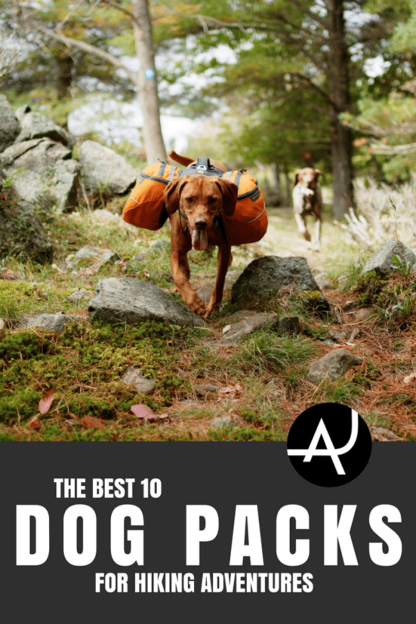 Best Dog Hiking Packs - Hiking Tips For Beginners – Backpacking Tips and Tricks for Women and Men