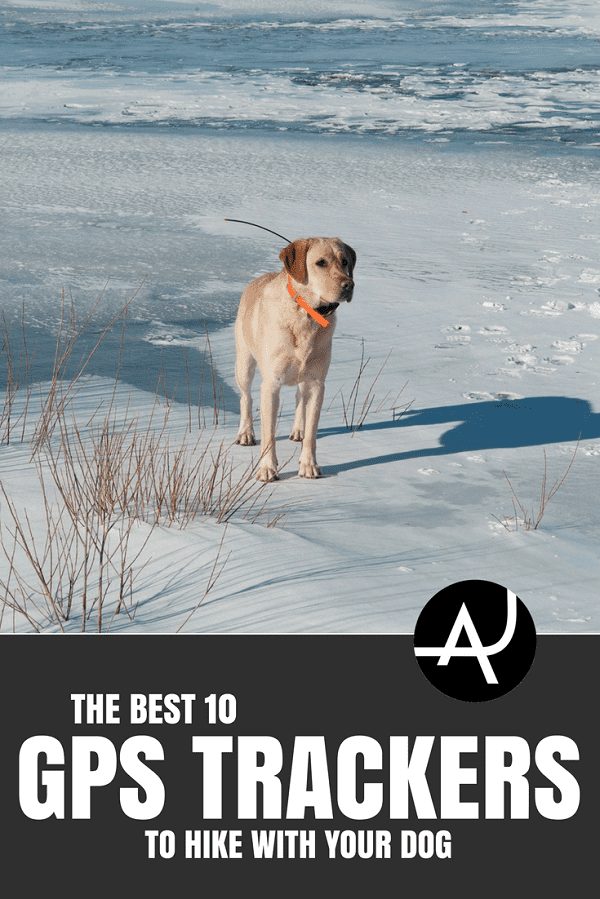 Best GPS Tracker for Dog - Hiking Tips For Beginners – Backpacking Tips and Tricks for Women and Men