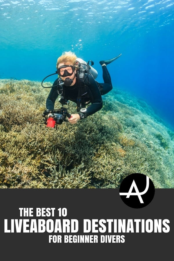 Best Liveaboard Destinations for Beginners - Best Scuba Diving Destinations - Diving Bucket List - Adventure Vacations - Beautiful Locations and Places to Dive