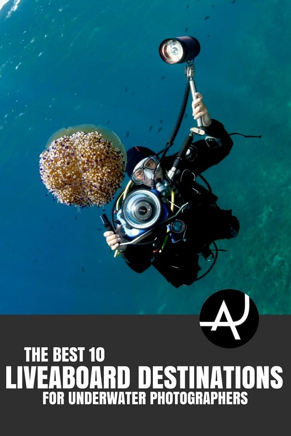 Best Liveaboard Destinations for Underwater Photographers - Best Scuba Diving Destinations - Diving Bucket List - Adventure Vacations - Beautiful Locations and Places to Dive