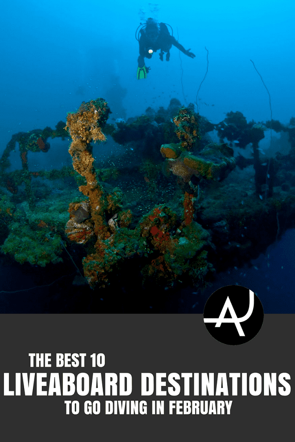 Best Liveaboard Destinations to Go in February -Best Scuba Diving Destinations - Diving Bucket List - Adventure Vacations - Beautiful Locations and Places to Dive