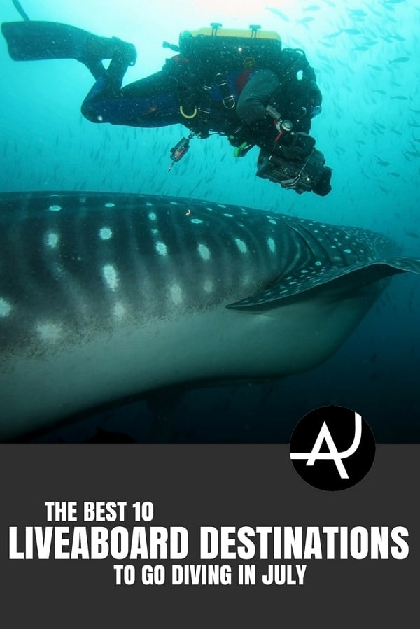 Best Liveaboard Destinations to Go in July - Best Scuba Diving Destinations - Diving Bucket List - Adventure Vacations - Beautiful Locations and Places to Dive