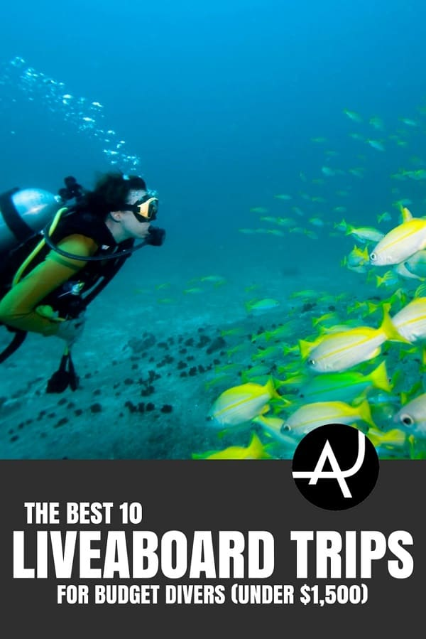 Best Budget Liveaboard Trips - Best Scuba Diving Destinations - Diving Bucket List - Adventure Vacations - Beautiful Locations and Places to Dive