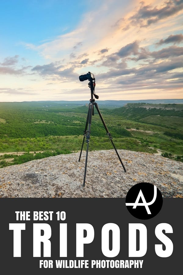 Best Tripod for Wildlife Photography - Outdoor Photography Tips and Ideas - Photography Equipment – Hiking Photography Articles – Nature, Wildlife and Landscape Photography Posts