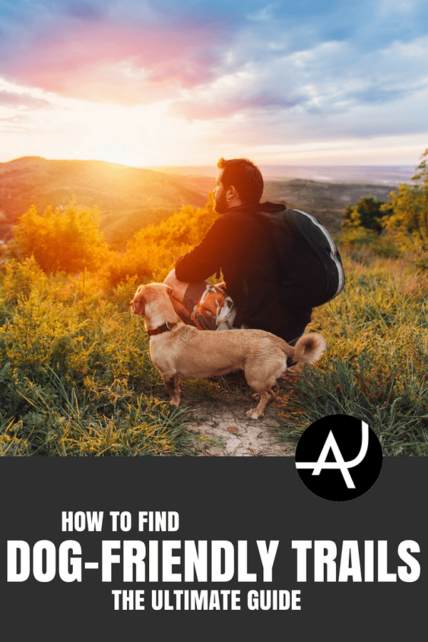 How to Find Dog Friendly Trails - Hiking Tips For Beginners –