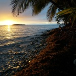 Scuba Diving and Kayaking in Glovers Reef (Belize)