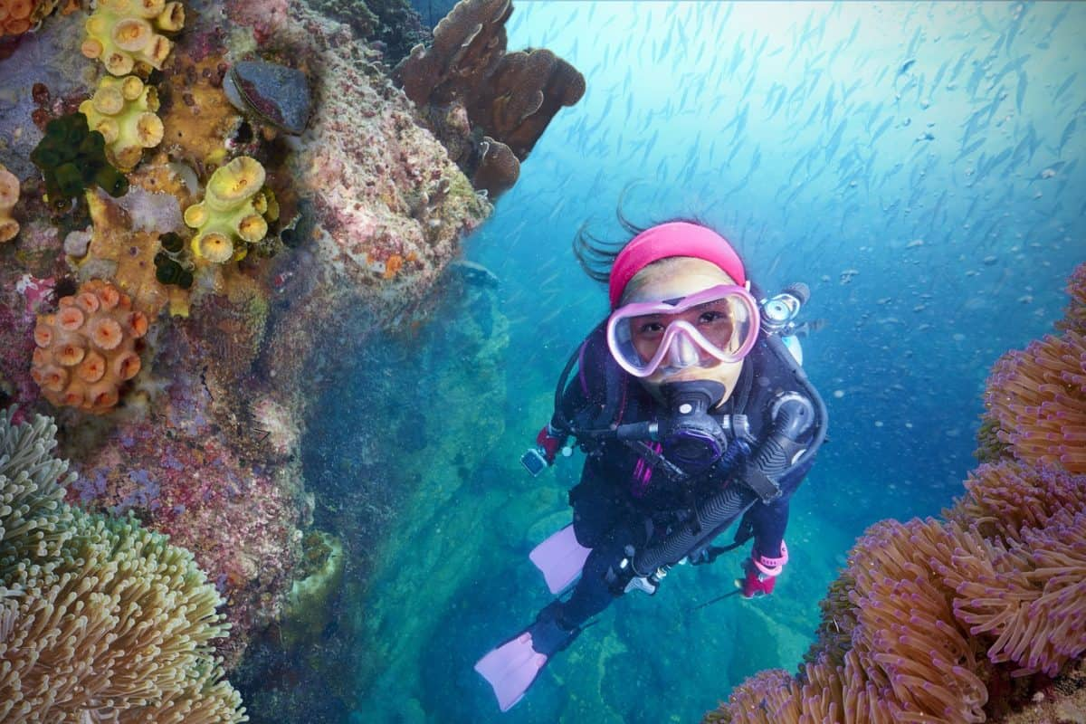 diving liveaboard single travelers can experience