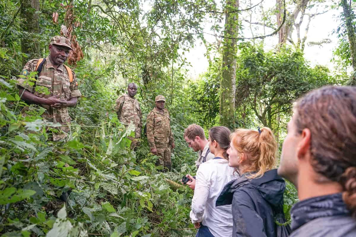 Uganda Gorila Trekking