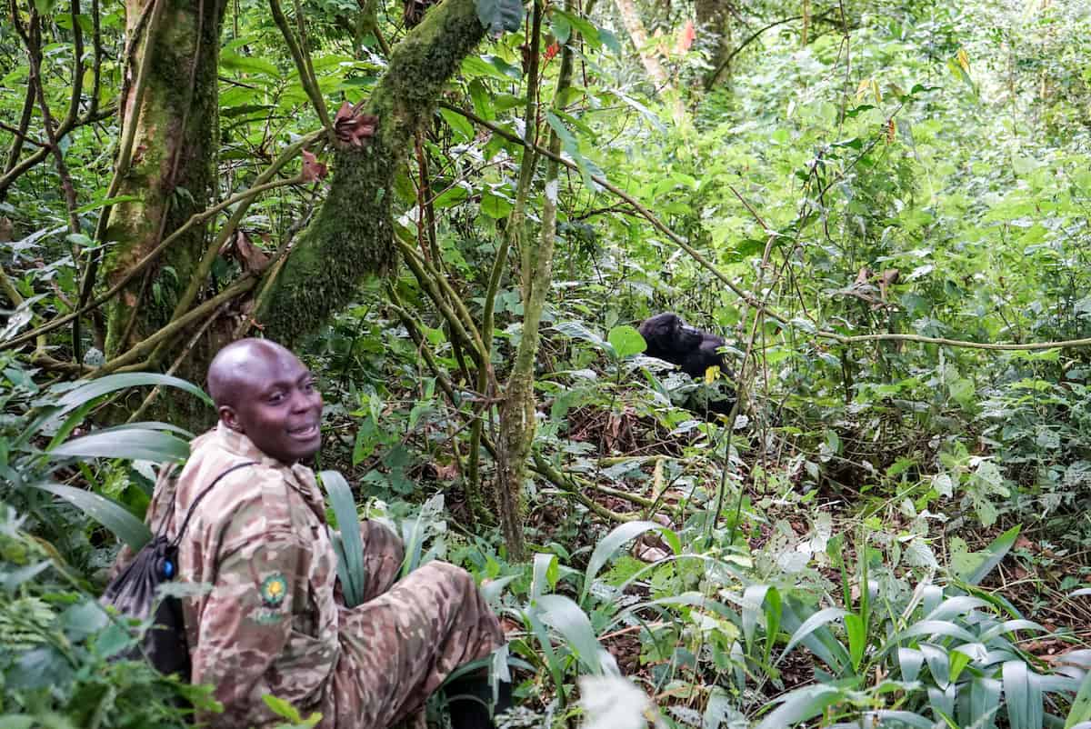 Adventure Trekking with Gorilas