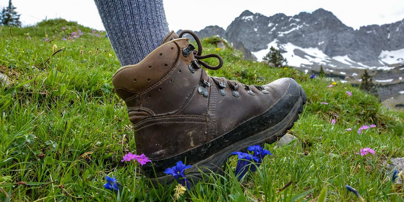 best summer hiking socks