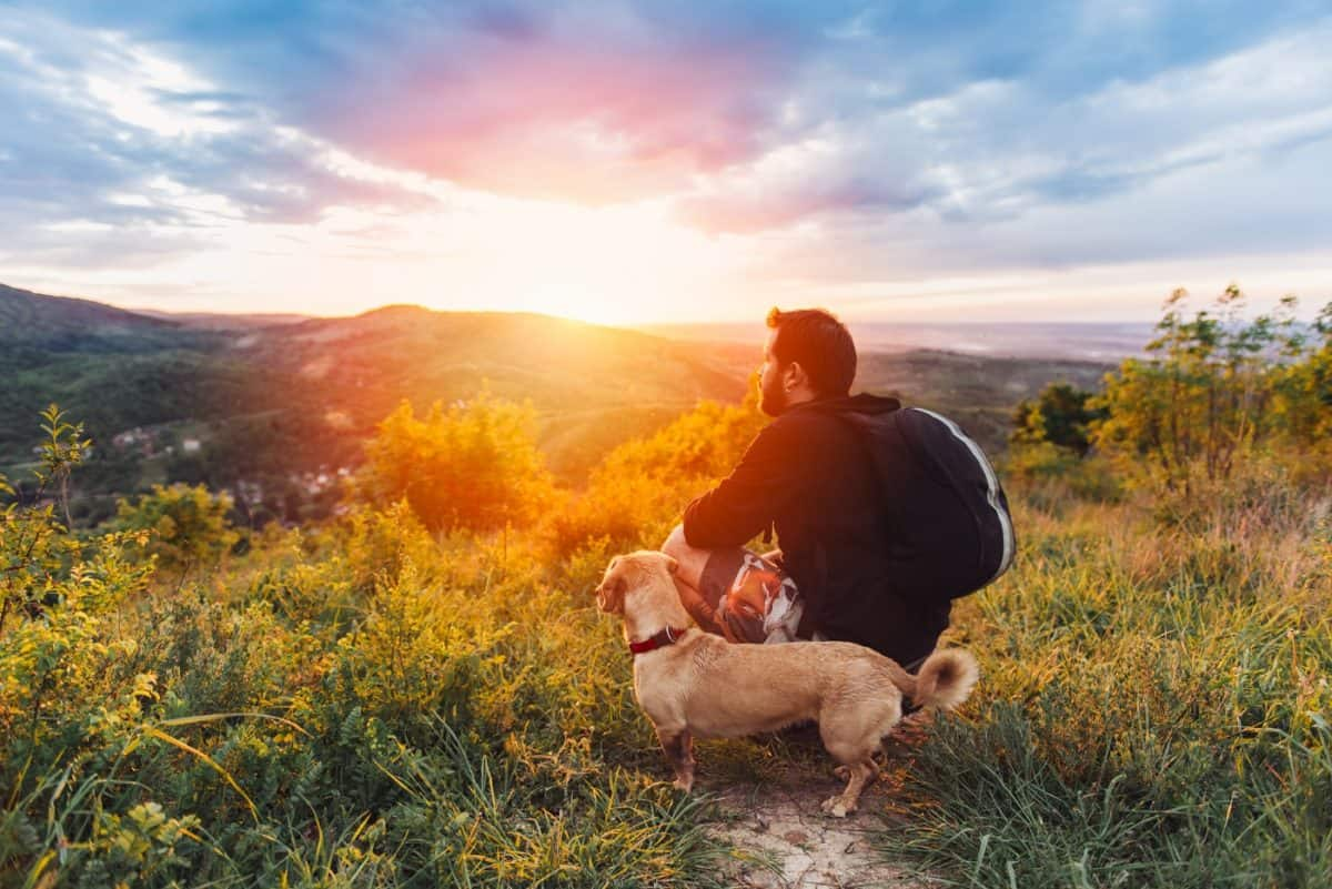 how to find dog friendly trails