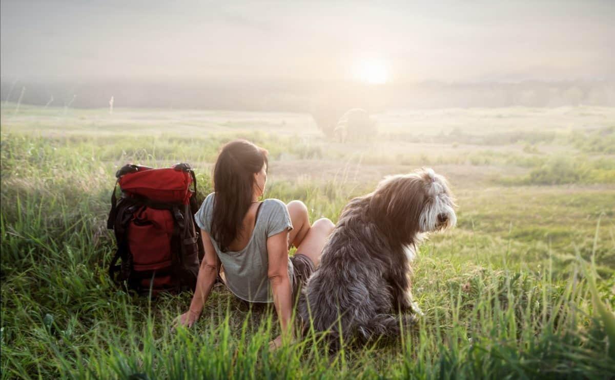 ways to find dog friendly trails