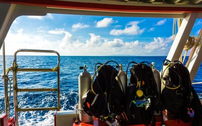 how to get started with liveaboard diving