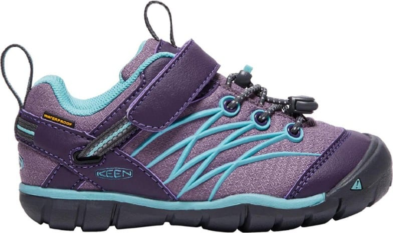 Top 5 Best Hiking Shoes for Kids of