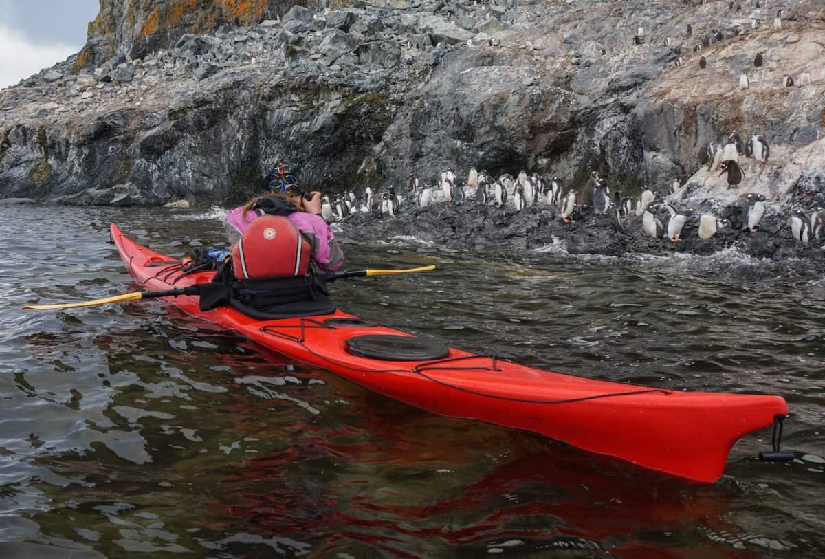 Penguins and kayak in Antarctica