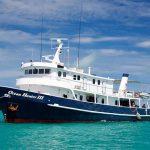 Ocean Hunter 3 Liveaboard Palau