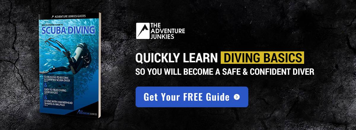 Diving Quickstart Guide