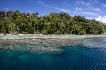 solomon islands liveaboard