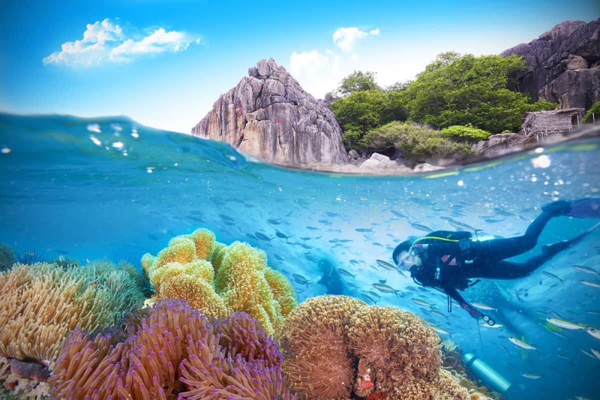 ideal thailand liveboard trips