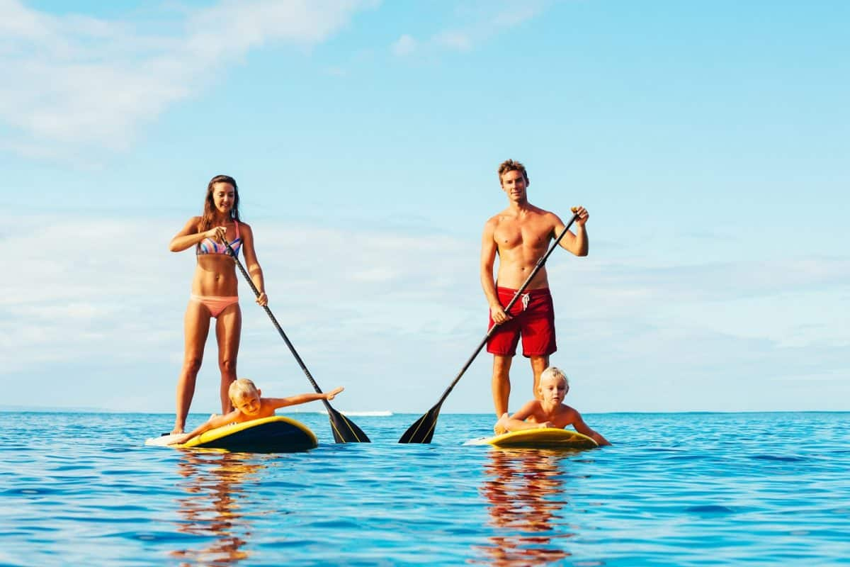 paddle boards of different types