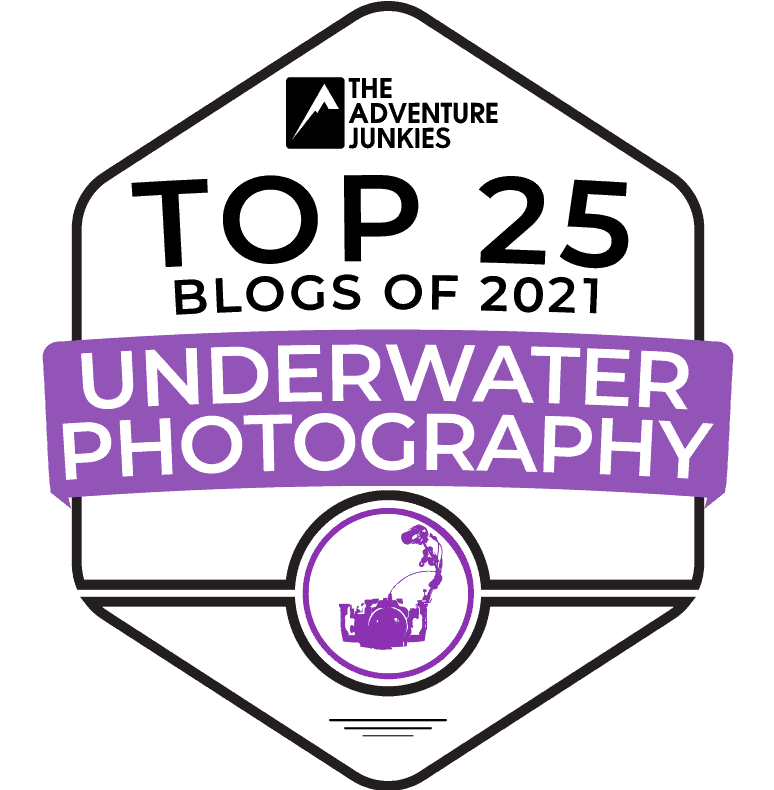 top 25 underwater photo blogs 2021