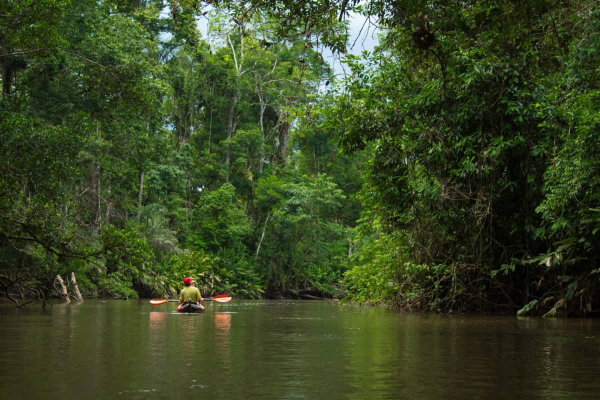 amazon-kayaking-tour-river-explorers-T1