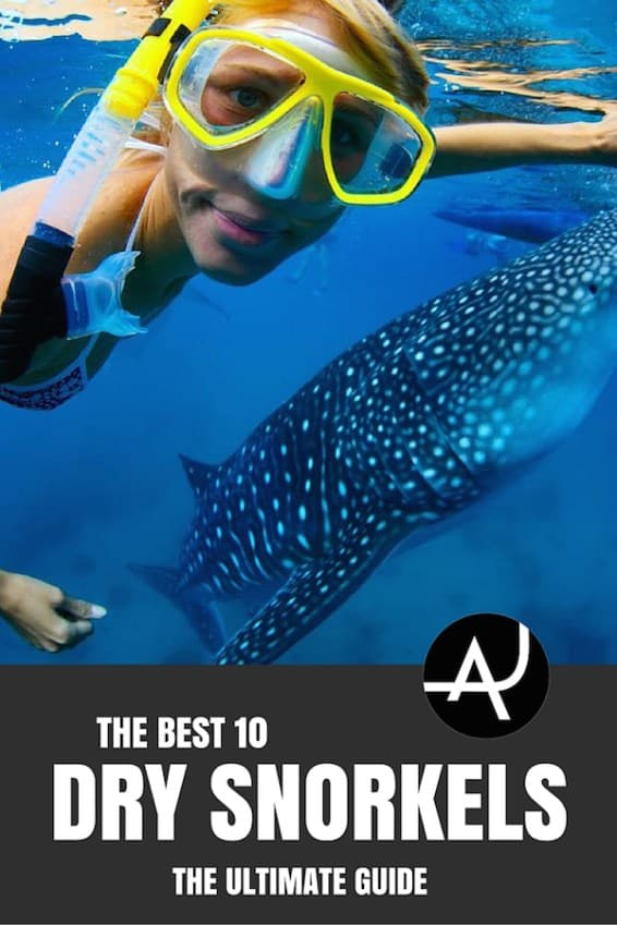 Top 10 Best Dive Snorkels – Scuba Diving Gear and Equipment Posts – Dive Products and Accessories