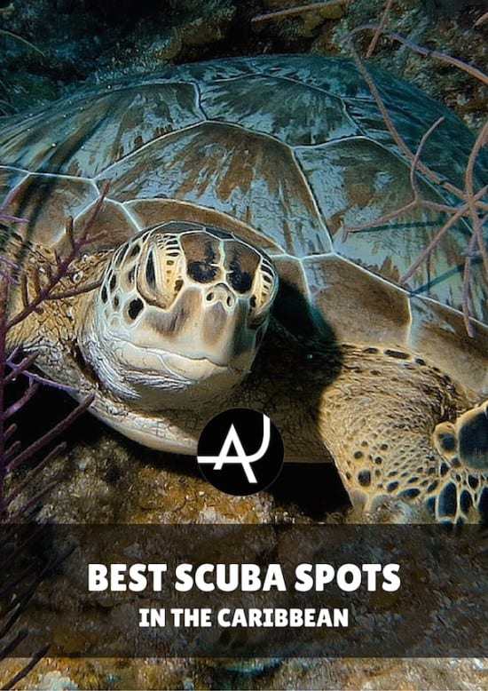 Top 10 Best Scuba Diving in the Caribbean - Best Scuba Diving Destinations - Diving Bucket List - Adventure Vacations - Beautiful Locations and Places to Dive