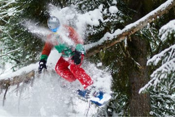 best freestyle snowboards