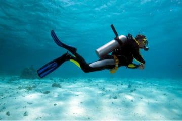 best scuba diving fins