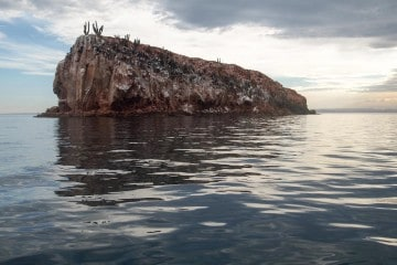 An Adventure Junkie's Guide to Baja California