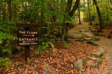 How TO Choose A Hiking Trail