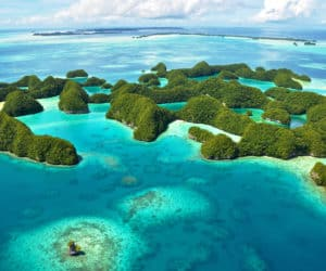 Liveaboard Diving Guide to South Pacific